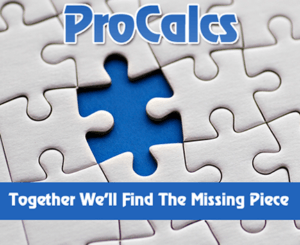 procalcs services puzzle